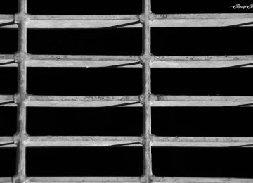מצלמת: החיים בשחור לבן